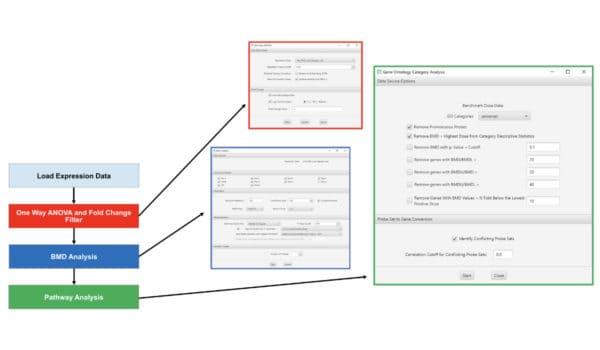 BMDExpress Basic Workflow