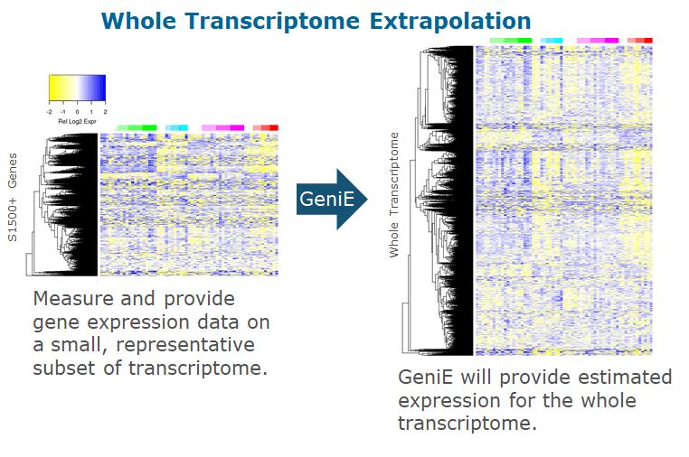 Genie Extrapolation